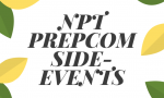 Evaluation of IPB´s Side Events during the NPT PrepCom 2019